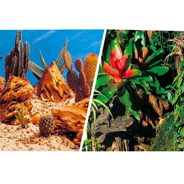 klebefolie terrarium
